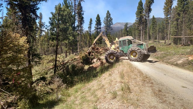 Trees are removed to construct a fuel break adjacent to a road north of Lincoln.