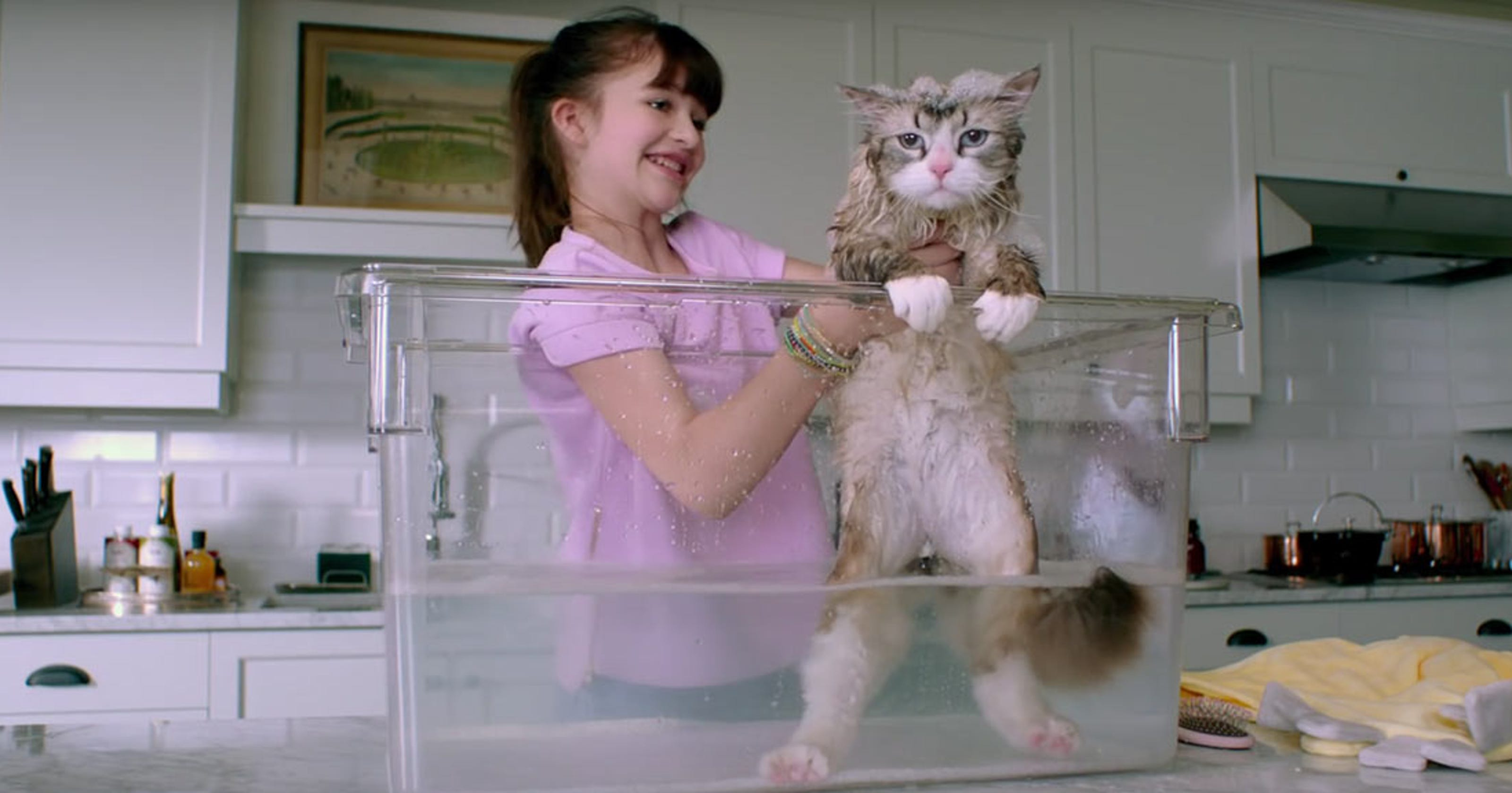 Review: Kids will enjoy \'Nine Lives,\' but adults beware