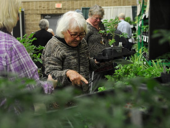 Suzanne Darr picks out mosquito plants at The Herb
