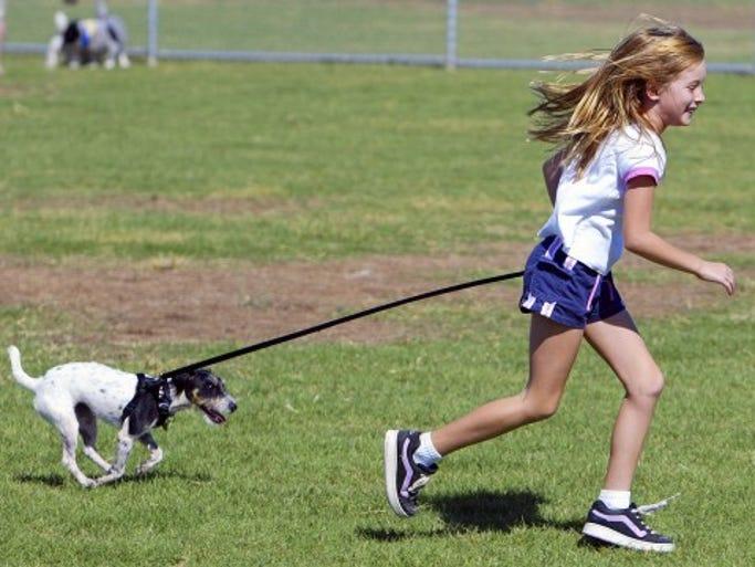 Roscoe Dog Park