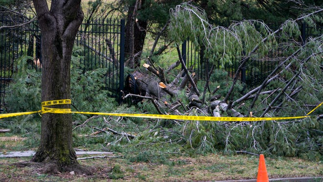 A wind-downed tree crashed through the metal fencing that surrounds the vice president's residence in Washington on March 2, 2018.