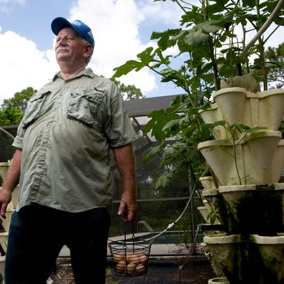 Collier County Clerk Dwight Brock stands in his hydroponics garden with a basket of freshly picked eggs outside his home just east of Golden Gate Friday, July 22, 2016.