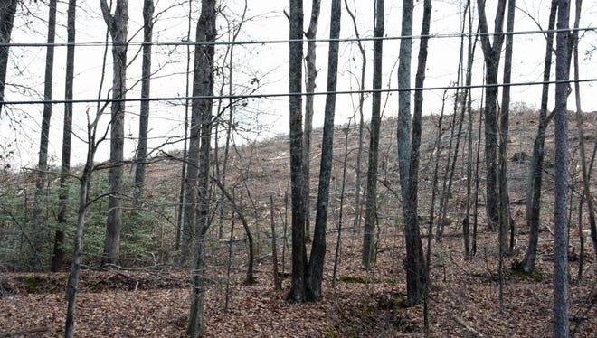 There is strong opposition to a proposed coal ash landfill at this site.