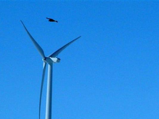 635699587480113502-SALBrd-11-18-2014-Statesman-1-A007--2014-11-17-IMG-SAL1118-wind-1-1-VP95JTS2-L519405193-IMG-SAL1118-wind-1-1-VP95JTS2