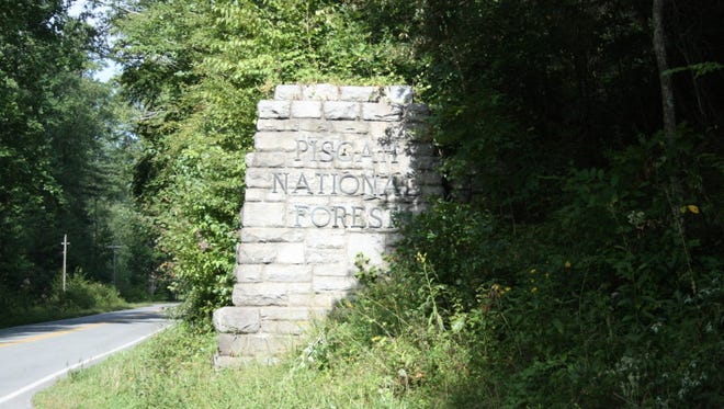 The entrance to Pisgah National Forest.