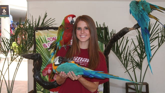 Lindsey Hutcheson has a love for animals including foxes and parrots.