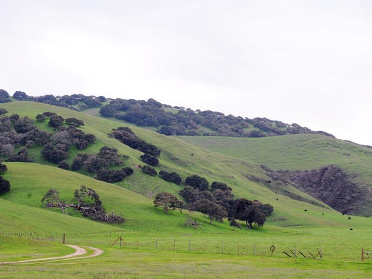 A view of proposed Ferrini Ranch development looking