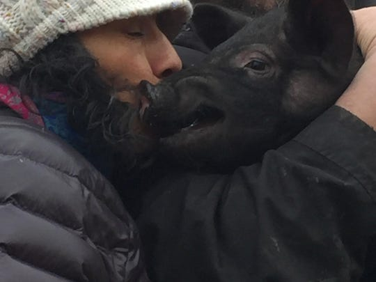 Anika Luna Spanish Teacher kissing pig