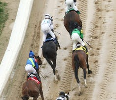 Fractures cause the most horse racing deaths in Kentucky. Here's the breakdown by park