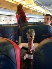 A turkey was taken on board a Delta flight as an emotional