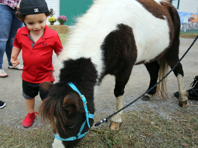Cabe Valentin pets one of the kid-friendly animals