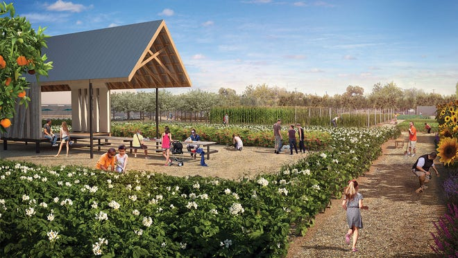 An artist's rendering of The Farm at Los Olivos, a proposed partnership between Aric Mei of The Parlor, farmer and artist Matthew Moore and the Phoenix Parks and Recreation Department.