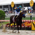 Victor Espinoza, aboard American Pharoah, celebrates winning the 140th Preakness Stakes on Saturday at Pimlico Race Course.