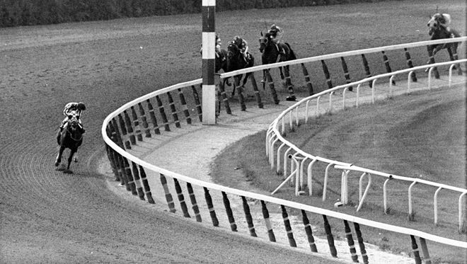 In this June 9, 1973, file photo, jockey Ron Turcotte, aboard Secretariat, turns for a look at the field as they make the final turn on the way to winning the Belmont Stakes horse race, and the Triple Crown, in Elmont, N.Y.