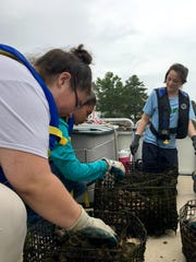 Interns work on an oyster project with the Center for the Inland Bays in South Bethany on July 6, 2017. From left is Julia Lee, Jennifer Pizano and LEAF Coordinator Rebecca Hanus.