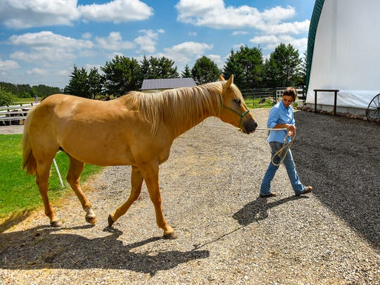 Jodine Rothstein works with one of the horses at her equine-assisted therapy center called Gaits of Hope Wednesday, June 27, at Sandy Knoll Farm in Rice.