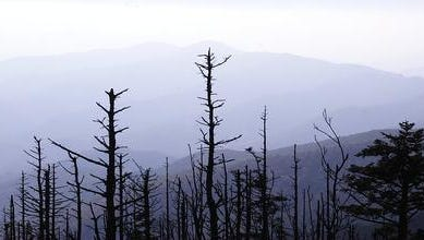 An view of the Great Smoky Mountains National Park,