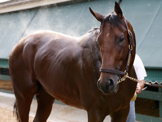 USP HORSE RACING: PREAKNESS-WORKOUTS S RAC USA MD