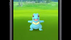 A screenshot of 'Pokemon Go.'