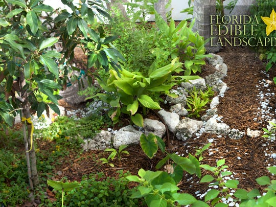 edible landscaping provides delicious return on investment