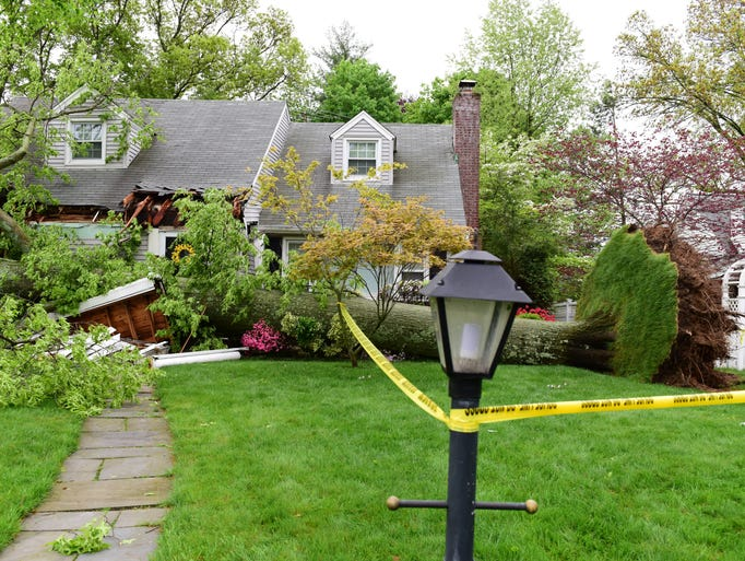 An uprooted tree fell on a house and car at a home