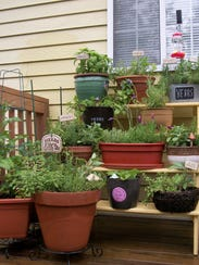 Susan Eggleston recommends a potted herb garden like