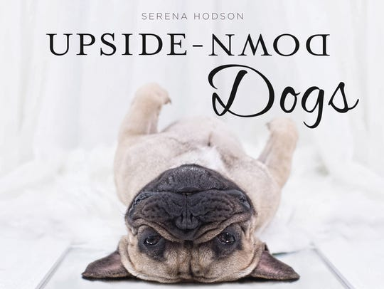 'Upside-Down Dogs'