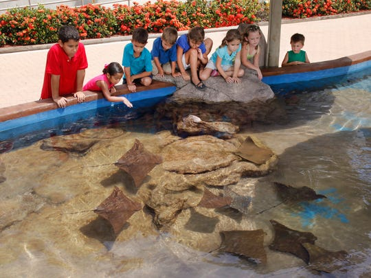 Texas State Aquarium offers its 2018 Spring Break mini-camps