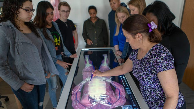 Instructor Penny Schwanz (right) demonstrates the Anatomage to students from physical therapy and anatomy classes.  Here she shows student Anabel Torres (left) and other students how to manipulate the image on screen. MATC's new Anatomage table which renders the human body in 3D helps students visualize anatomy.  There are the actual bodies of 3 individuals encoded into the machine.  This image is of the caucasion male named Carl.  The image on screen can be dissected with a stylus, layer by layer and replaces dissecting a human cadaver.