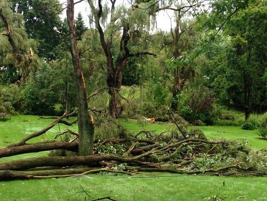 Storm hits Farmington, Farmington Hills