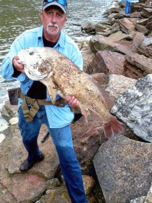 MNCO 0701 Dick Martin's Notes on Ohio angler landing monster fish.jpg