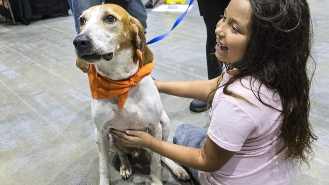 Tamara Kramer, 9, checks out Matt, an almost 4-year-old hound mix from Big Dog Ranch, at the 6th Annual Countdown 2 Zero Adoption Event last fall at the South Florida Fairgrounds.