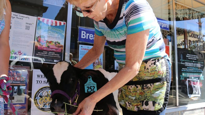 Court Street Dairy Lunch owner Marlene Blanchard feeds Rachel outside of her dairy-cow themed restaurant on Tuesday during Holding Court.