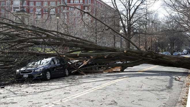 A tree blown down by high winds blocks part of Woodley Road NW in Washington D.C., on March 2, 2018, as strong winds, heavy rain, surging waves and sporadic snow wreak havoc across the East Coast over the weekend. (Li Muzi/Xinhua/Sipa USA/TNS)