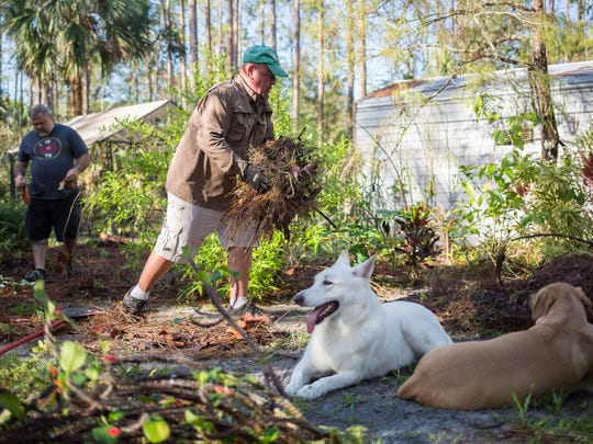 Mike Brewer, left, and Jason Di Palma are kept company by their dogs Harley and Bow while cleaning debris from their expansive home garden in Naples on Wednesday, Oct. 11, 2017. The couple lost many rare plants at the hands of Hurricane Irma last month.