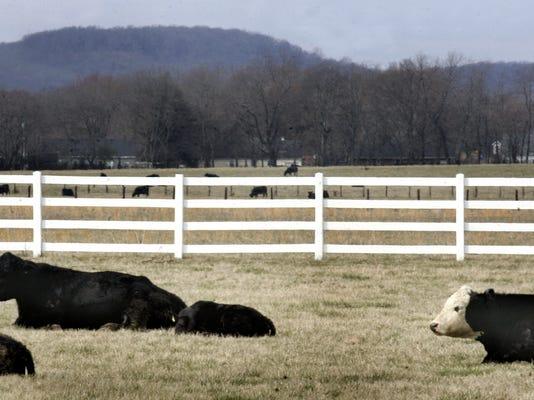 01-Burgess Farm.jpg