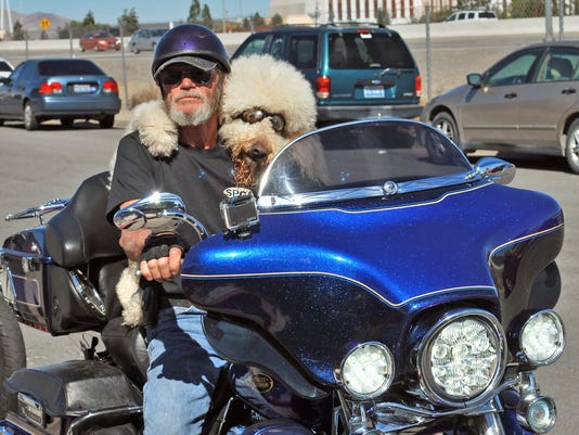 -Motorcycle Dog 3.jpg_20141024.jpg