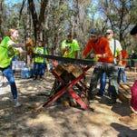 30th Annual Lumberjack Festival in Milton