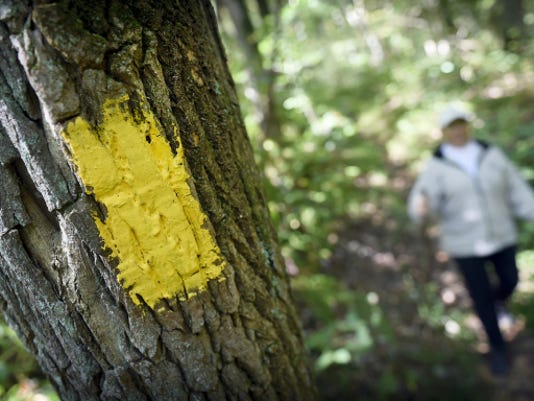 A bright yellow blaze marks the trail as Sharon L. Southall, president of the Lebanon Valley Hiking Club, walks along Horseshoe Trail just inside Lancaster County near Route 501 recently.