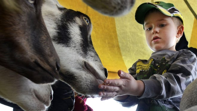 Noah Chervenka, of Green Bay, feeds the various animals at Riverfest in 2013.