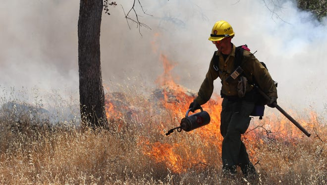Fire crew members work the Ash Mountain prescribed fire in Sequoia National Park.