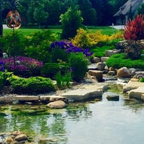 Washington couple converts pool into flowing garden