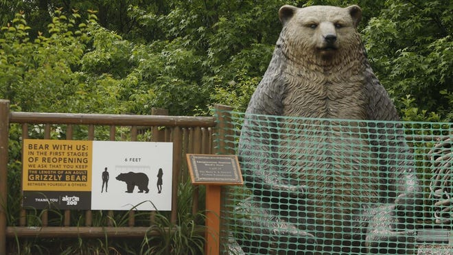 The popular grizzly bear photo op has been fenced off to the public as the Akron Zoo promotes social distancing with signage seen Friday suggesting that guests stay a grizzly bear's length apart from each other Friday. Zoos statewide are permitted to open Wednesday.