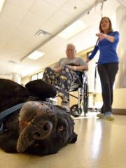 """Puma begs for a belly rub while working with a patient during the certified facility dog's last rounds. A """"bone voyage"""" retirement party was held at MRC before the dog headed home for the last time."""