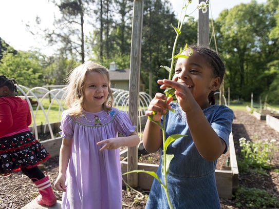 Hutchison early childhood girls find joy on the campus