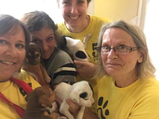 Last week, Amy Heinz and 12 volunteers from AHeinz57