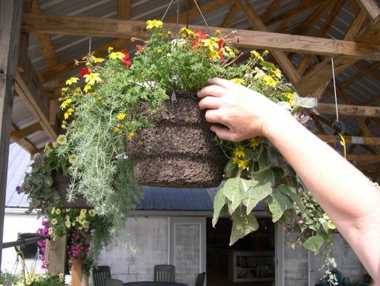 -JULY LIU Gardening column.jpg_20100622.jpg