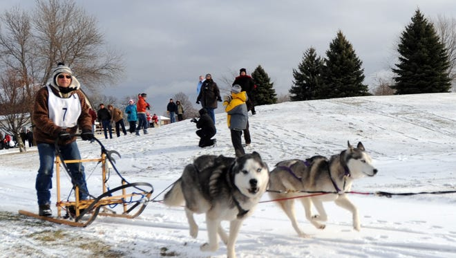 Snow dogs and fun at the Can't Depend on Snow dog sled race and weight pull held at the Rolling Meadows golf course in Fond du Lac.