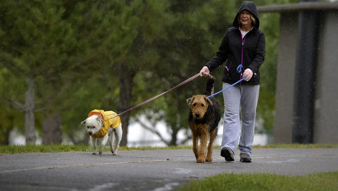 Karen Lansing walks with her dogs Icy and Jazzy in the rain last Friday in Great Falls. More rain and possibly snow is expected to hit the region beginning Sunday at higher elevations and at lower elevations Monday.