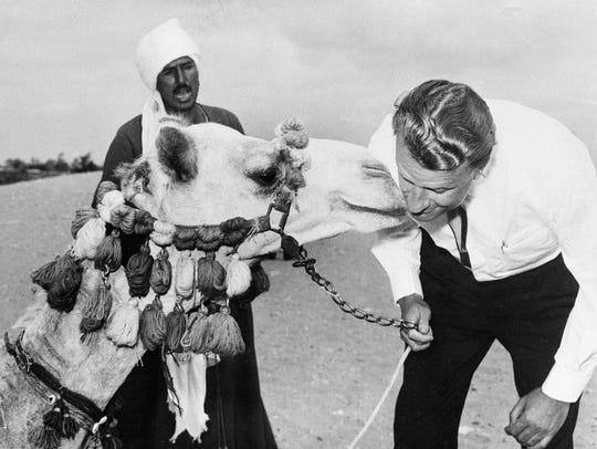A camel nuzzles Graham during a visit to Egypt in 1960.